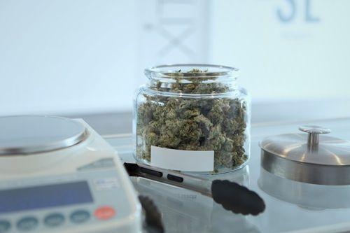 0124 Cannabis