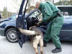 hundefuehrer bei pkw kontrolle