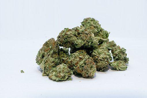 0330 Marihuana