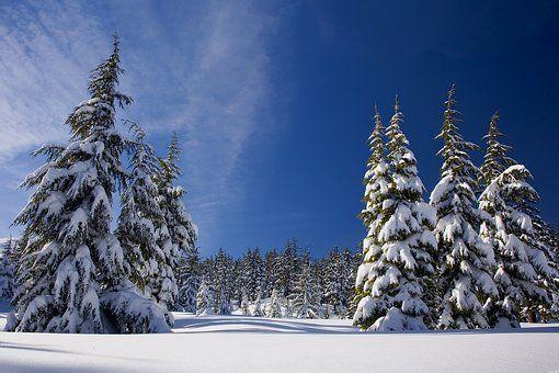 1110 Schnee