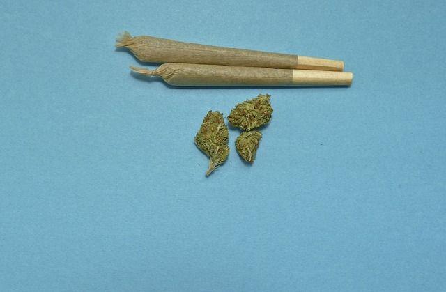 marijuana-2248066 640