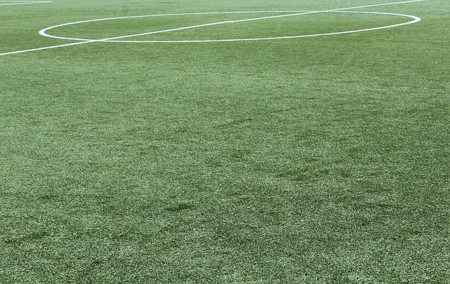 synthetic-grass-1436614 640