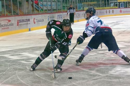 Eishockey Starbulls
