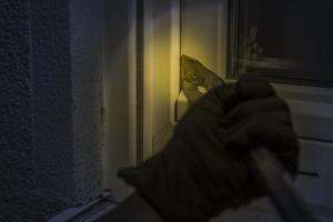 burglar-1678883 640