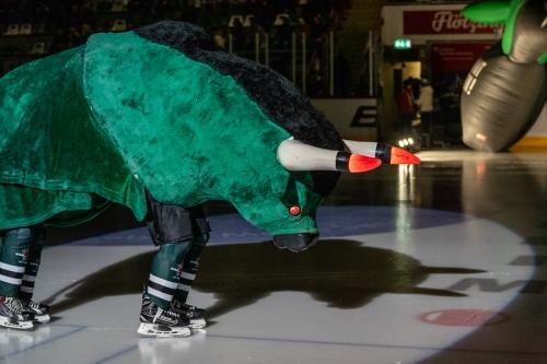 Eishockey Starbulls Symbol