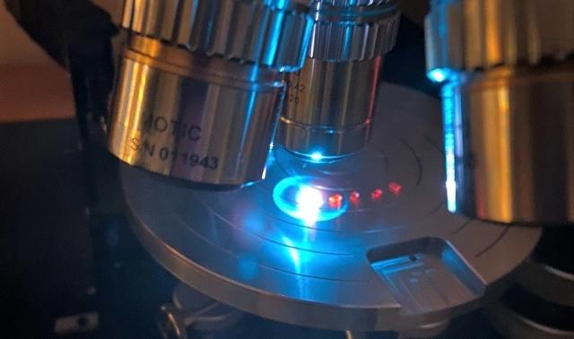 Fluoreszenzanregung Labor