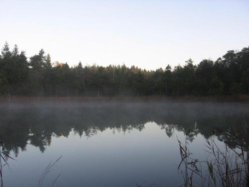 Kristallsee Wasserburger Moor