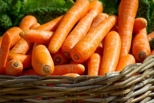 Lebensmittel Karotten
