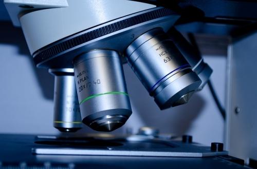 Mikroskop Forschung