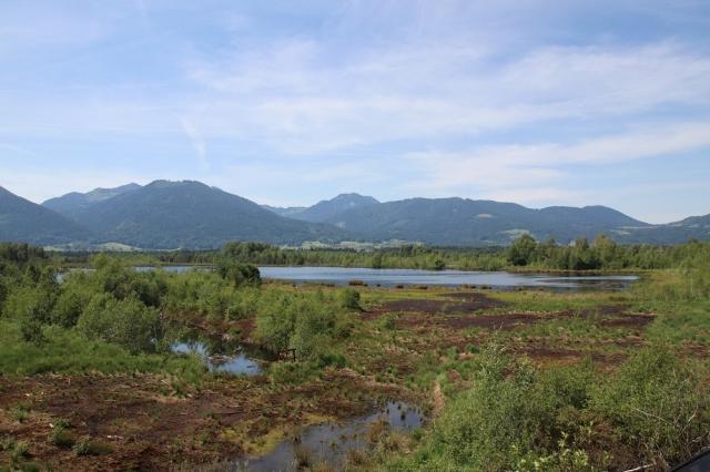 Ramsar Zertifikat Foto 4