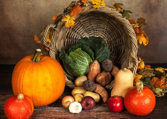 pumpkin 1768857 640