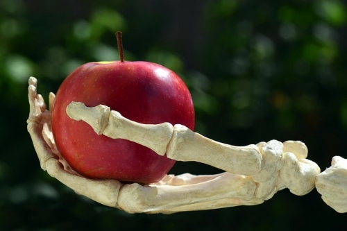 apple 3483512 640
