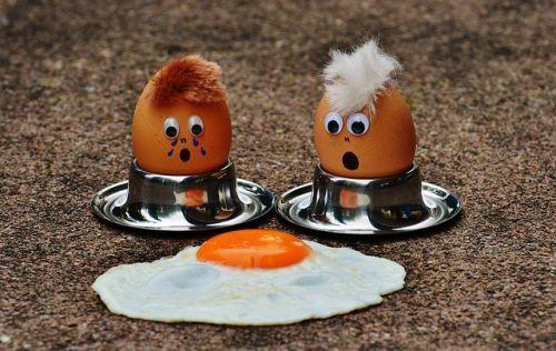 egg-1364869 640